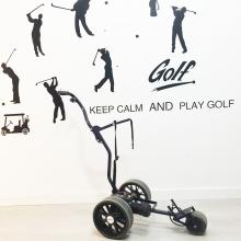 MINIKADDY. Carro eléctrico de golf 2ª Mano
